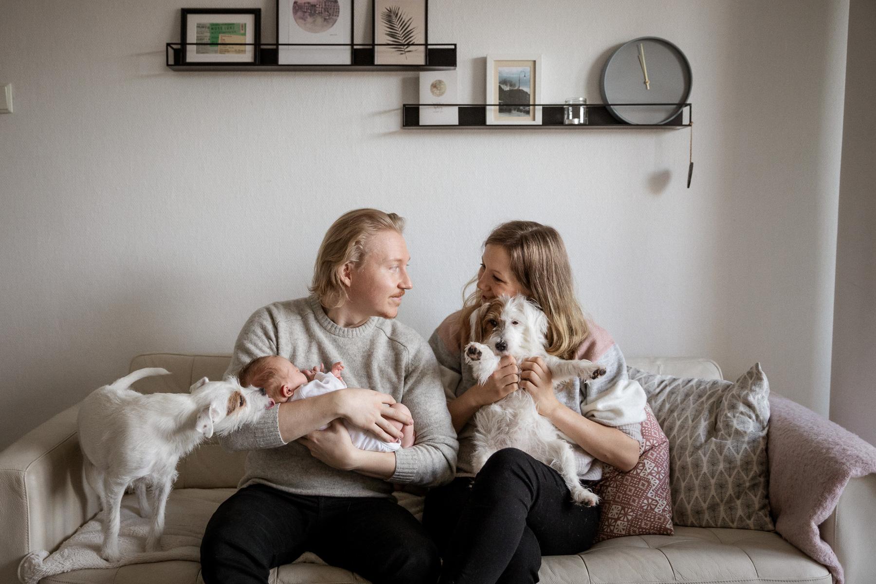 Koiraperheen vauvakuvaus, Helsinki, Siru Danielsson Photography